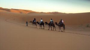 Merzouga Camel Trekking In Morocco